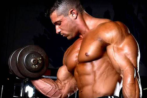 Влияет ли протеин на рост члена