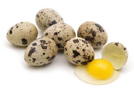 Польза от перепелиных яиц для мужчин