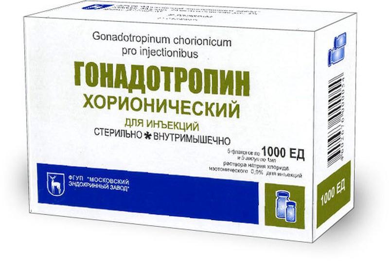 гонадотропин эректильная