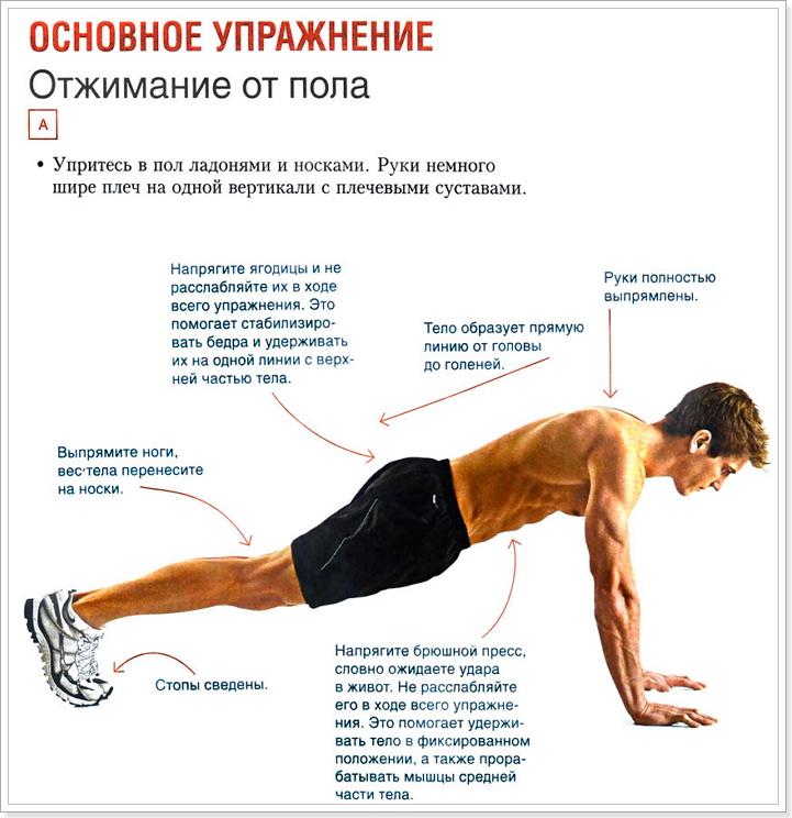 упражнение: отжимание от пола