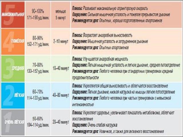 Определяем нормальный пульс у мужчин показатели нормы