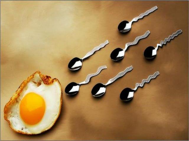 Продукты которые накапливают сперму