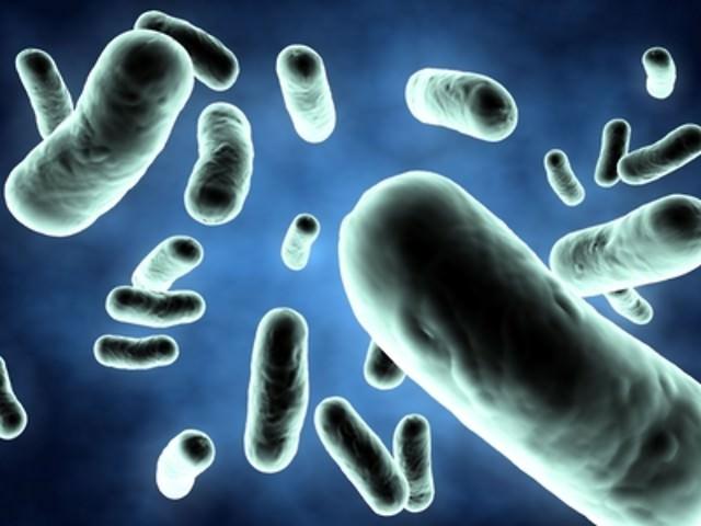 Вырабатывется ли сперма в преклонном ворасте
