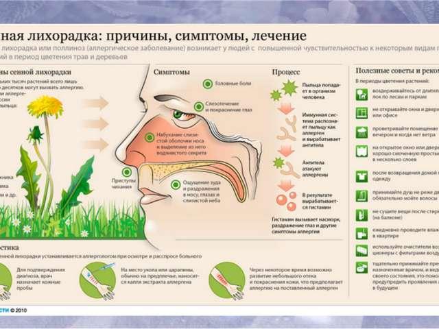 Питание при лечении мышиной лихорадки