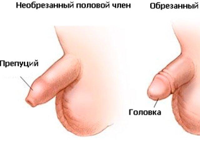 Р обрезание