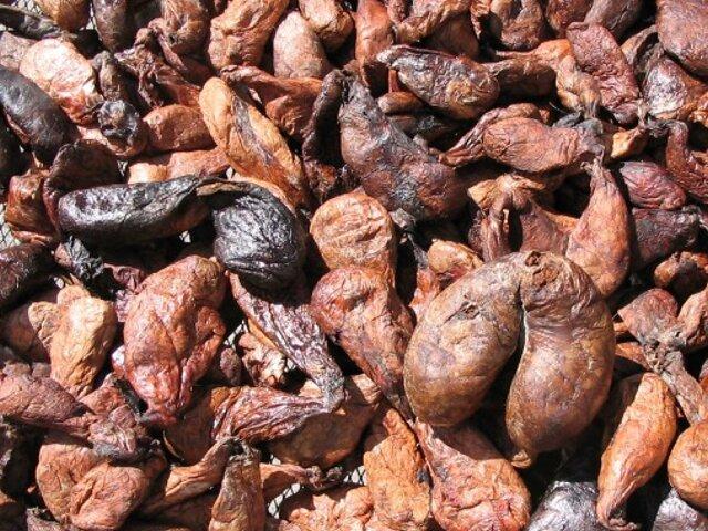 Кастореум аромат секса