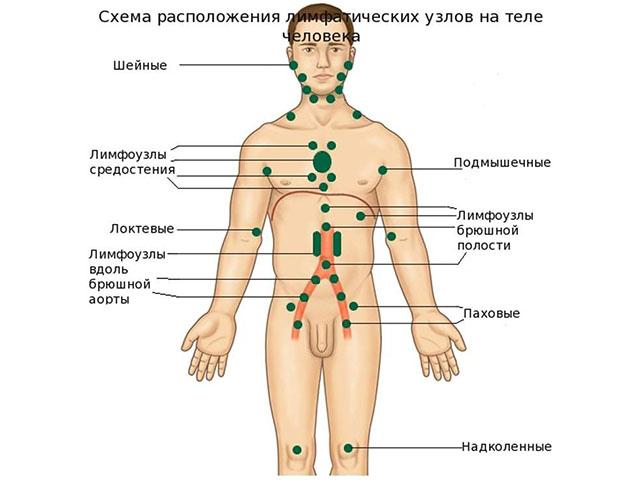 препараты для потенции у мужчин аналоги российские