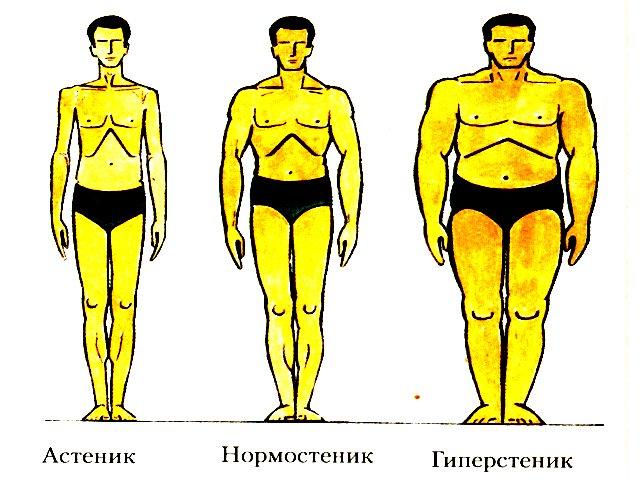 Соответствие роста и веса мужчин