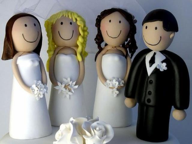 Полигамия и моногамия что это
