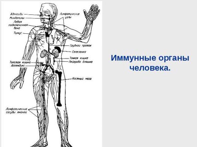 Уреаплазма парвум у Мужчин схема лечения