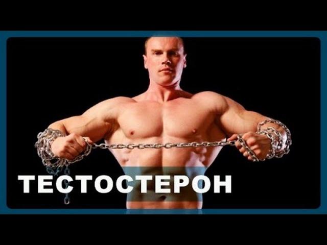 Секс увеличивает выработку тестостерона