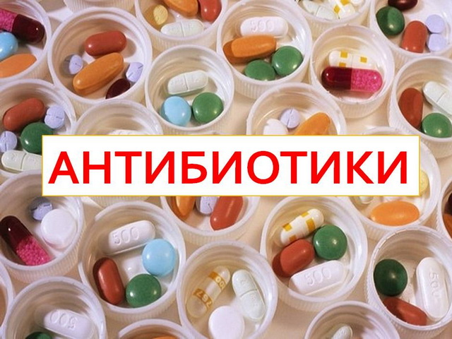 натуральные средства для потенции Оленегорск