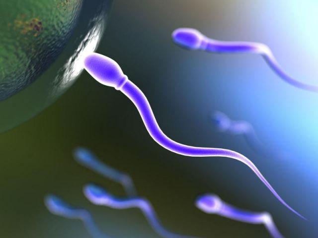 Пиоспермия фото