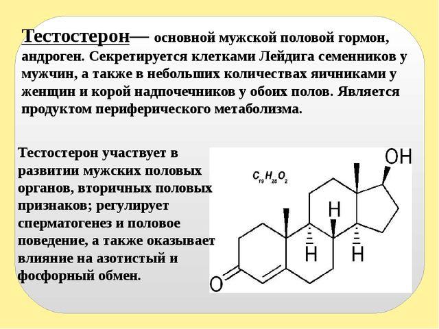 Информация крема торс молота