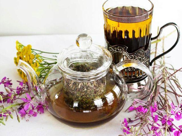 применение иван-чая