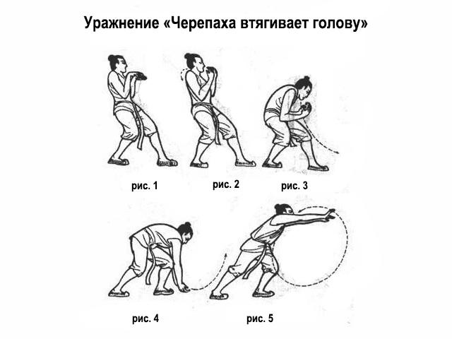 Схема выполнения упражнения