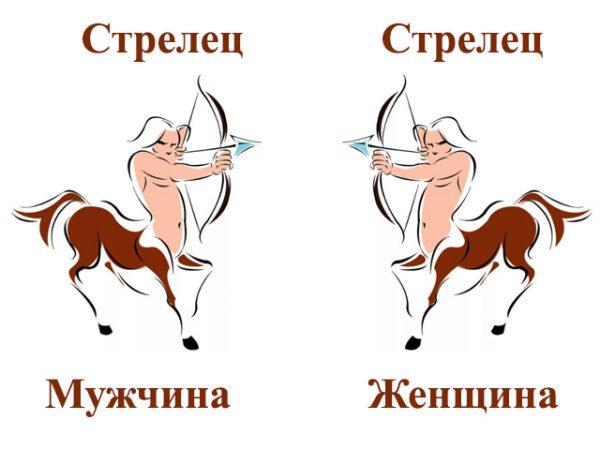 Гороскоп совместимость стрелец мужчи  лев женщи  совместимость