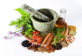 Лекарственные растения для увеличения потенции