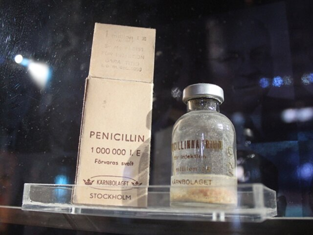thesis in penicillin Ernest duchesne (30 may 1874 duchesne's thesis  while fleming generally receives credit for discovering penicillin.
