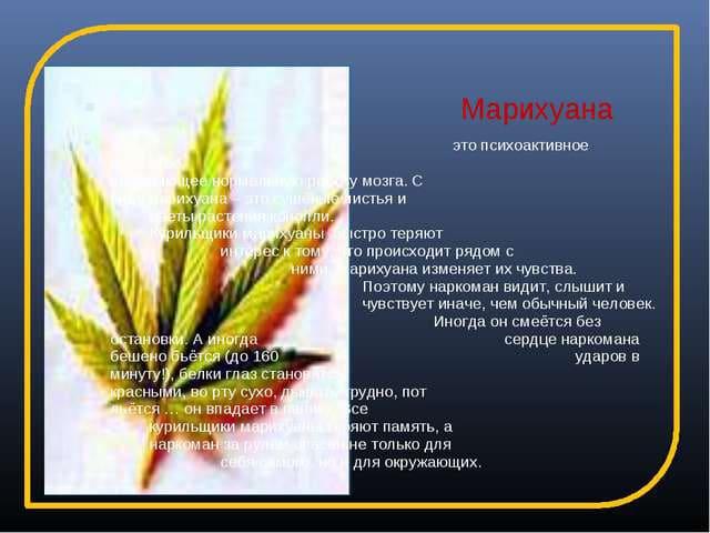 Как употребление марихуаны влияет на потенцию