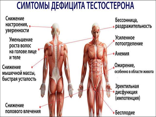 Таблетки для выработки тестостерона у мужчин
