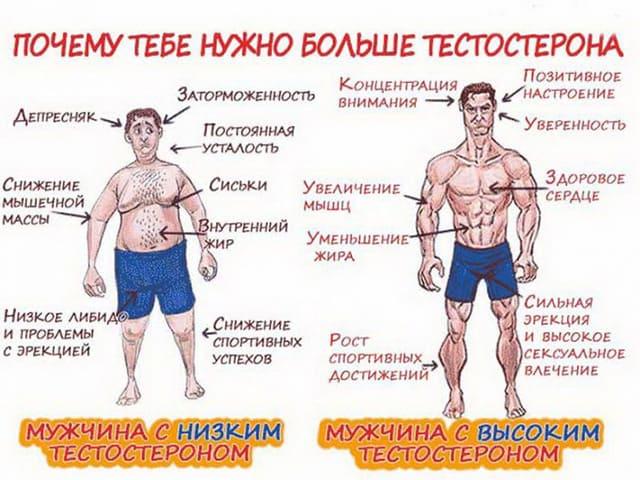 Препараты тестостерона для мужчин: инъекции, таблетки, бады. Какой лучше выбрать?